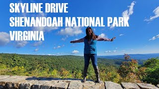 Skyline Drive - Scenic drive to Big Meadow Lodge at the Shenandoah National Park, Virginia. 4K video