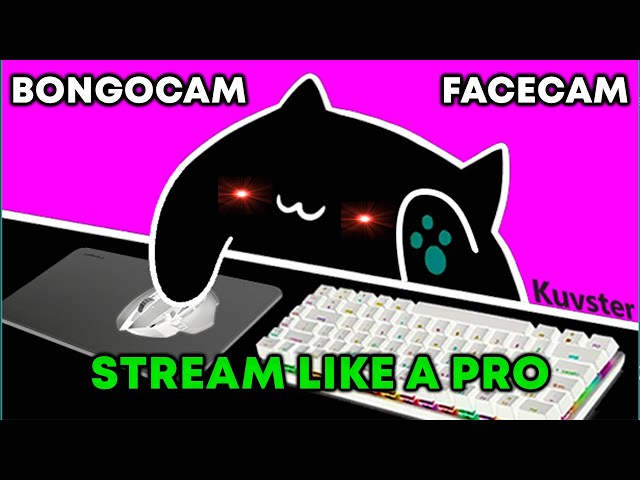 how to setup BONGO CAM as a FACECAM in 90 SECONDS