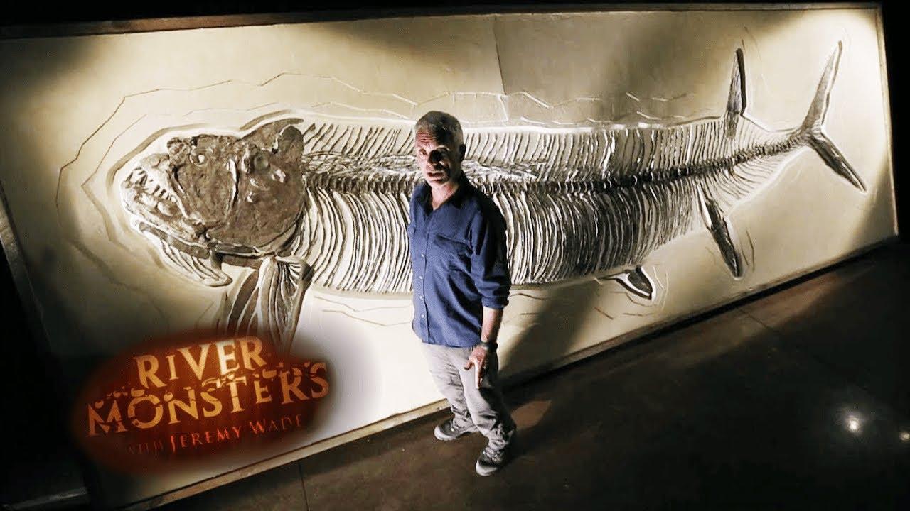 The Prehistoric Monster Xiphactinus   River Monsters