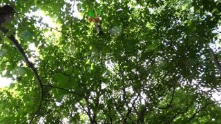 Ballonflucht - Der sichere Westen  Geocaching