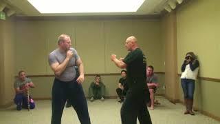 Systema Spetsnaz  los Andgeles Real Self Defense Vadim Starov Strikes & Punches & Kicks