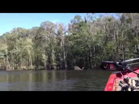 Trail Boss Campground Rv Park Near Welaka Fl