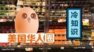 蛋仔小课堂:挑选鸡蛋的冷知识你知道几个?