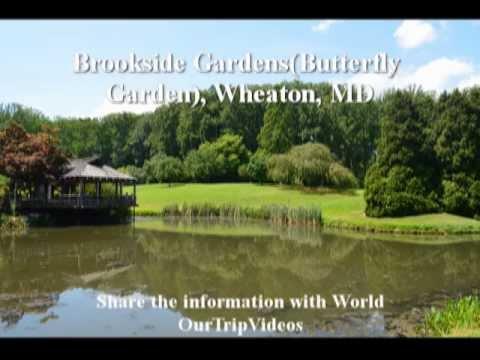 Brookside gardens coupons - Quilts direct coupon