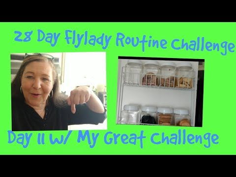 28 Day Flylady Routine Challenge Day 11 w/ My Great Challenge ..Sofia