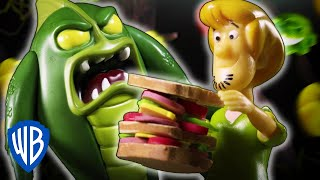 Scooby-Doo! Mystery Cases | The Case of the Swamp Picnic Showdown | WB Kids thumbnail