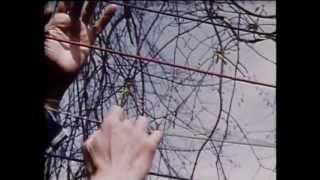 Dadascope Hans Richter 1961 Pt3