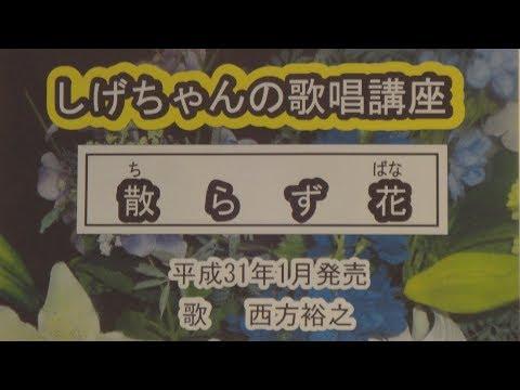 「散らず花」しげちゃんの歌唱レッスン講座/西方裕之・平成31年1月発売