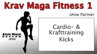 Krav Maga 2021 Fitness 1