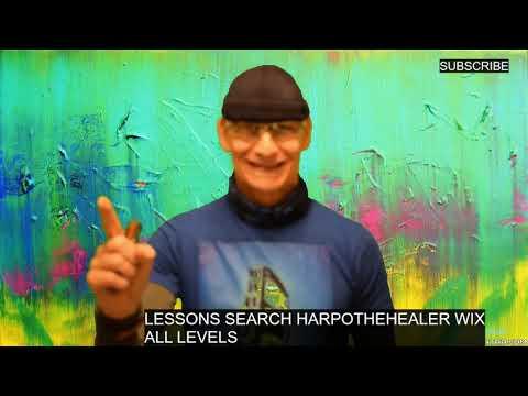 Silverfish 'Silver Bullet' Harmonica Microphone Test Drive