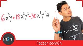 Factorización por factor común