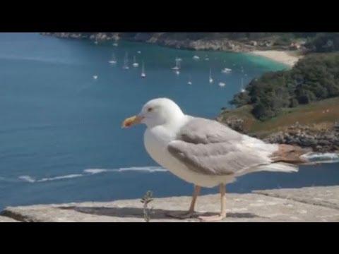 Discover Galicia - Nature