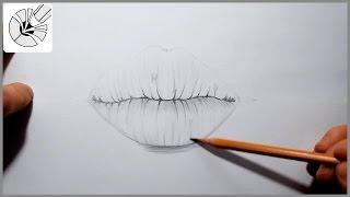 Я рисую губы карандашом | рисуем человека #2 Волшебные рисунки(Как нарисовать губы карандашом? Карандашный рисунок. Рисуем губы. Музыка: YouTube Audio Library., 2016-03-27T11:24:26.000Z)