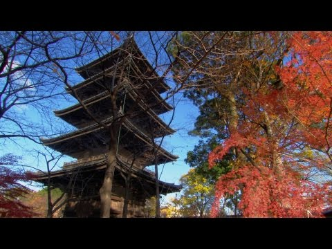 Secret Of The Pagoda's Earthquake Resistant Design
