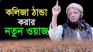 new waz 2017 Mawlana kamrul Islam Arifi  01819120916 (1 Part)