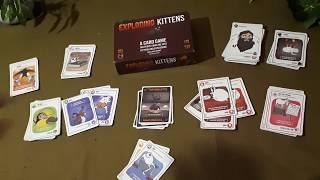 Обзор игры взрывные котята.