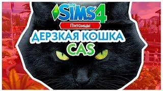 THE SIMS 4 ПИТОМЦЫ CAS - ДЕРЗКАЯ КОШКА!