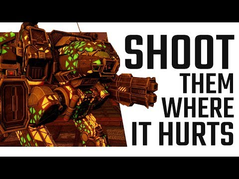 Shoot them where it hurts! Linebacker Build - Mechwarrior Online The Daily Dose #409
