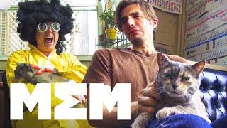 11 Ways to Pet Your Cat - FND Films on MEM
