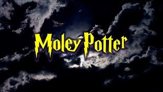 Moley Potter 2018 Mole Day Song by Mike Offutt