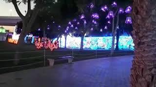 Dinosaur park at night