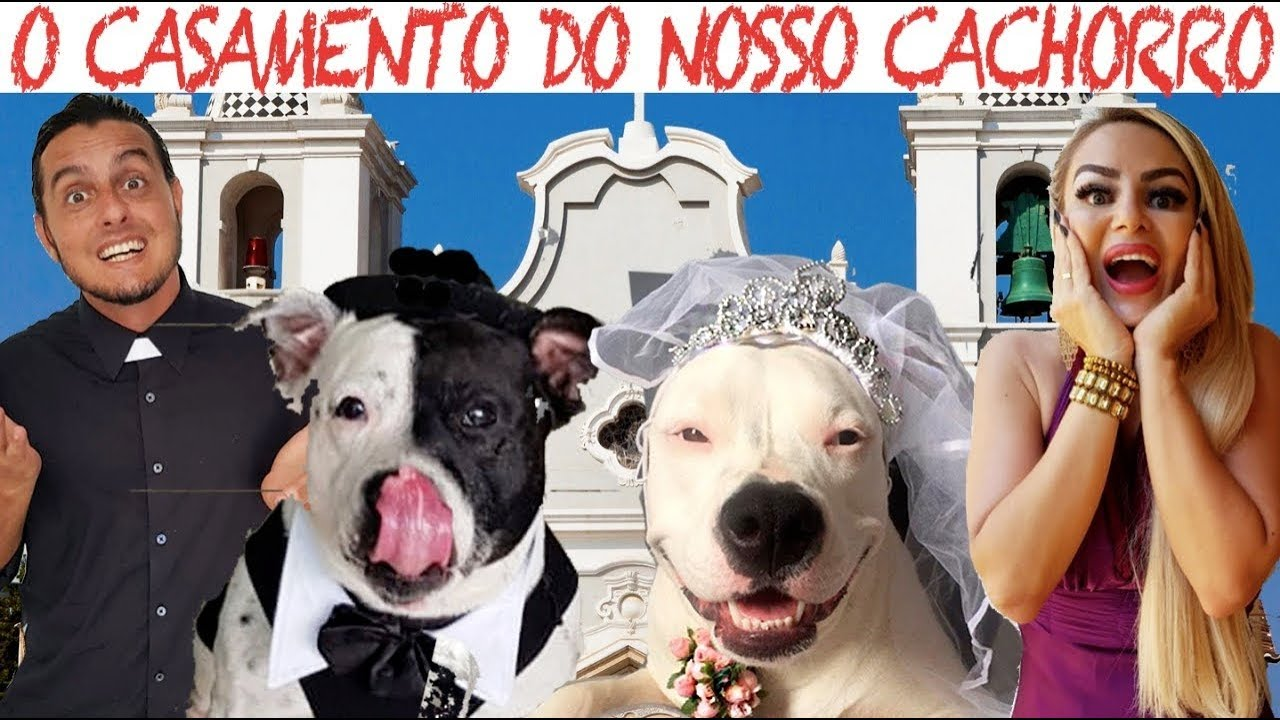 O CASAMENTO DO NOSSO CACHORRO