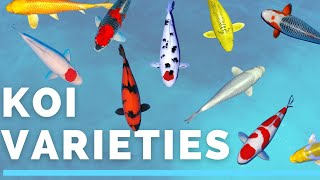 Koi Varieties - How To Identify The Koi In Your Pond