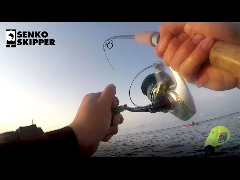 Saltwater Fishing: This Lure Hack will catch you more fish!