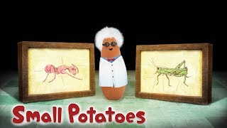 Small Potatoes - Science and Music | Songs for Kids