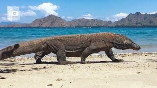 10 Playas más peligrosas del mundo. Parte 2