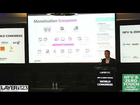 Know the Network: Monetizing Software in the NFV Market