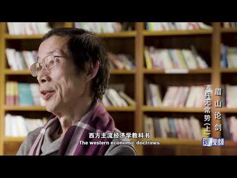 (2)Chinese economist breaks down economic myth about China,Part I