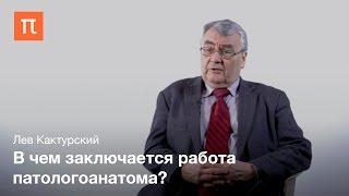 Роль патологической анатомии в медицине Лев Кактурский