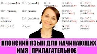 Японский язык для начинающих. Имя прилагательное. JLPT N5