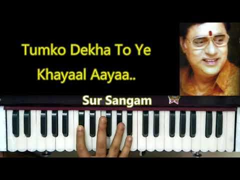 jagjit singh ghazal II learn harmonium in hindi II Tum Ko Dekha Toh  II Sur Sangam Cover