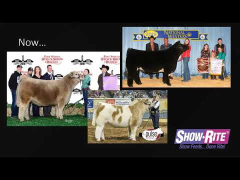 Show-Rite Feed Like a Pro: Cattle