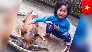 5-летняя девочка нашла свою собаку на рынке собачьего мяса
