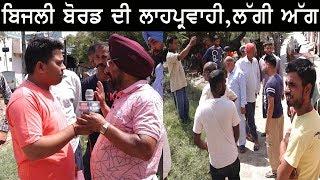 ਬਿਜਲੀ ਬੋਰਡ ਦੀ ਲਾਹਪ੍ਰਵਾਹੀ ਕਾਰਨ ਦੋ ਡੰਗਰ ਝੁਲਸੇ! Open Punjabi Live