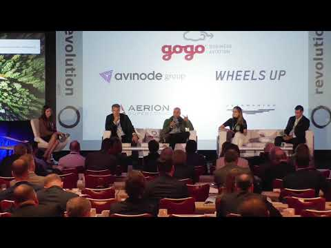 Flying angels – and other early stage investors (Revolution.Aero USA 2018)