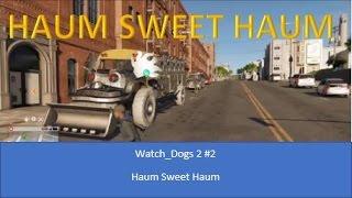 haum sweet haum   watch dogs 2 2