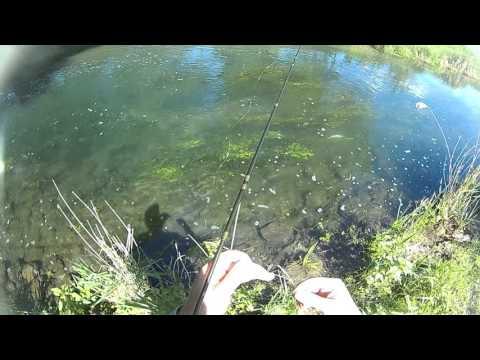 fly fishing bomby
