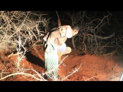 Kenya's police & KDF on the spot over Mandera mass graves mystery