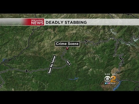 Female Stabbing Victim's Body Found In Angeles National Forest