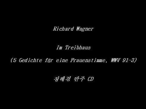 Träume (5 Gedichte für eine Frauenstimme, WWV 91-5 - Richard Wagner) - Piano Accompaniment