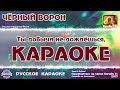 Караоке Черный ворон Новая версия Русская народная песня mp3