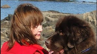 Dog Talk Media - Maureen Ross - Journey Helping Out!