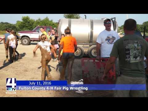 Fulton County Fair Pig Wrestling 7-11-16
