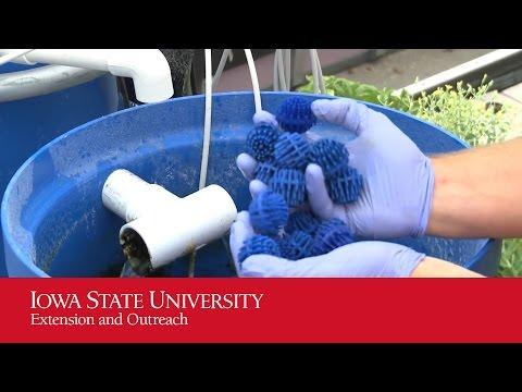 Aquaponics: Biofilter Tank