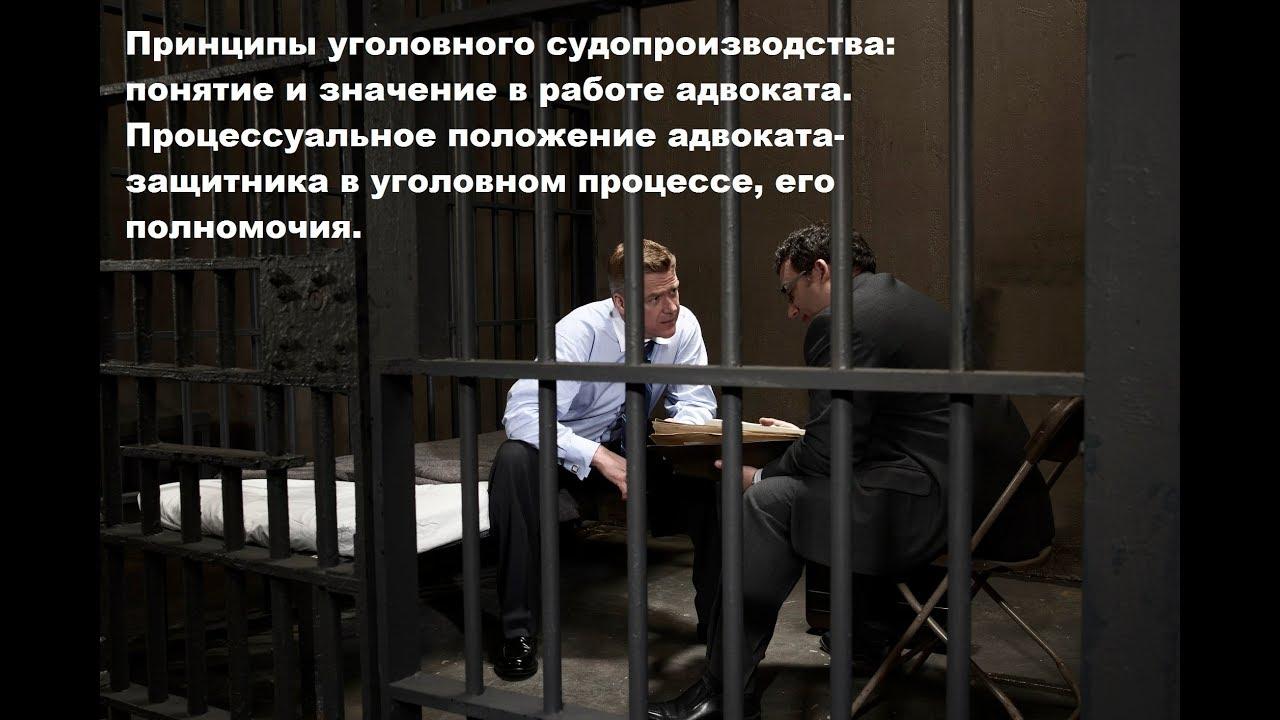 процессуальное положение защитника в уголовном процессе