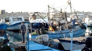 Old port of Old Jaffa